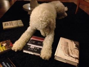 Hundar i böcker
